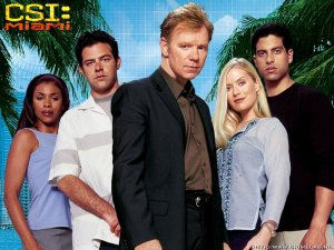 What?  There is a show with just as terrible acting and writing as CSI Miami?
